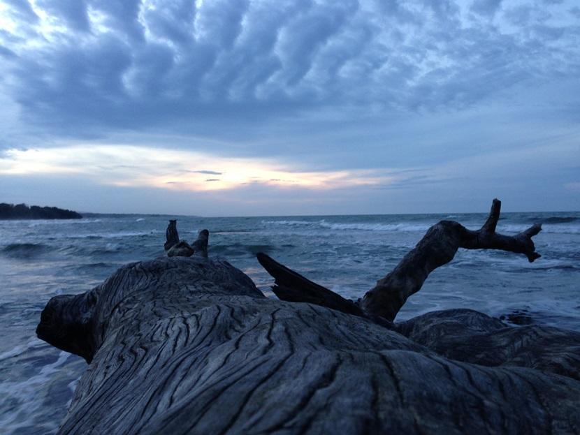 tronco-spiaggia