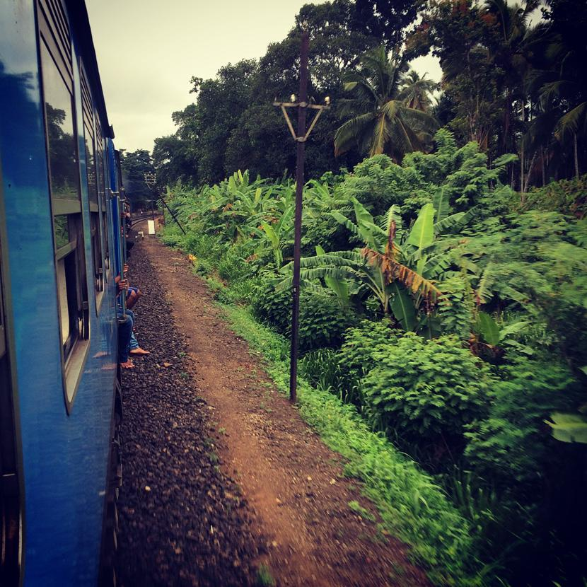 Foto scattata dal trenino blu in Sri Lanka