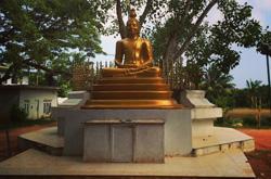 Matilde in Sri Lanka: tra sorrisi gentili e meraviglie naturali, le suggestive immagini di un'avventura alla scoperta di luoghi lontani
