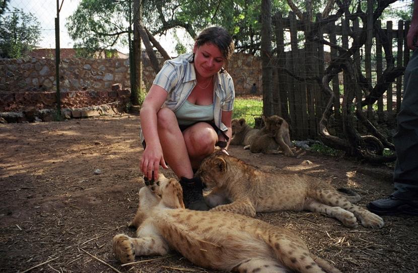 Una ragazza gioca coni cuccioli di tigre