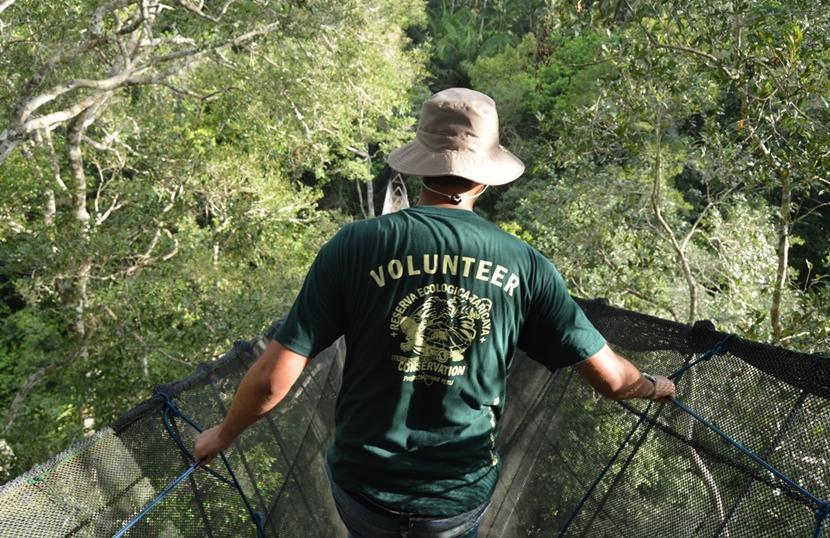 Volontariato per adulti all'estero: i migliori progetti del 2018