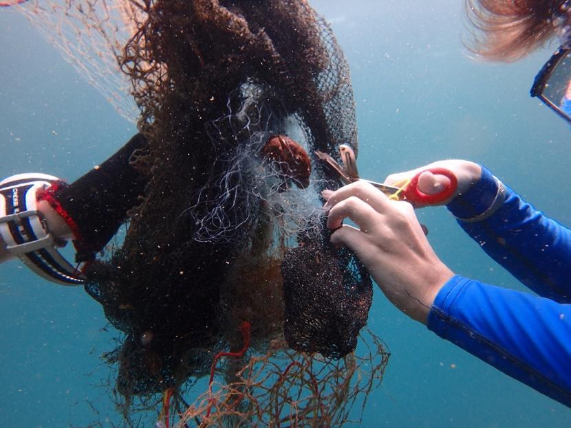 Een Projects Abroad vrijwilliger snijd een krab los uit een visnet