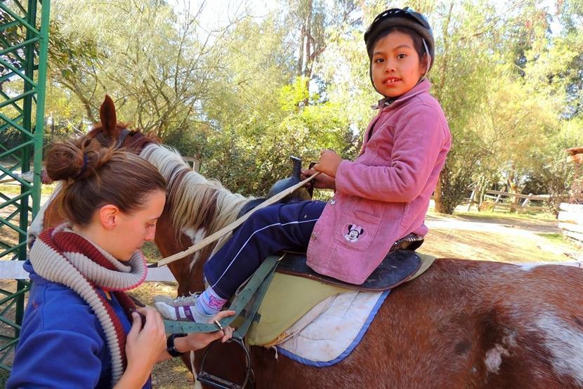 Tijdens een groepsreis naar Bolivia helpt een vrijwilliger bij de verzorging van paarden.
