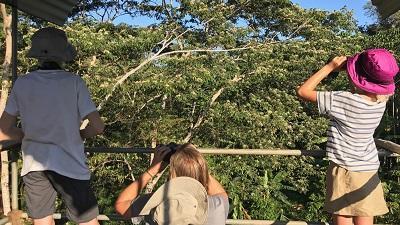 Vogels spotten op het natuurbehoud project van Peru