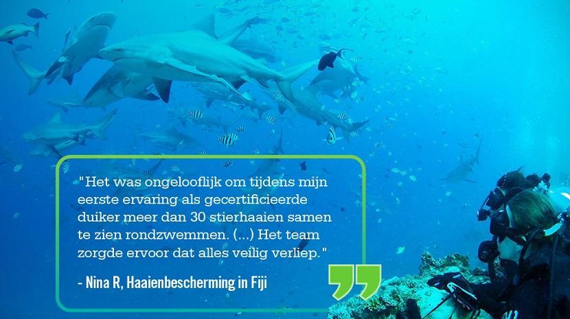 Quote van een vrijwilliger op het Haaienbescherming project voor jongeren wordt vermeld op een foto waar diepzeeduikers in Fiji een groep stierhaaien observeert.