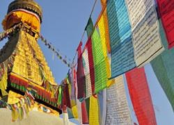 Monkey Temples & Jungle Treks | Nisha's 2 Weeks In Nepal
