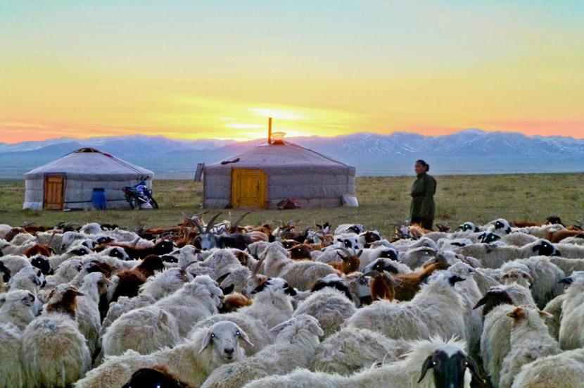 Sunset over the Mongolian steppe