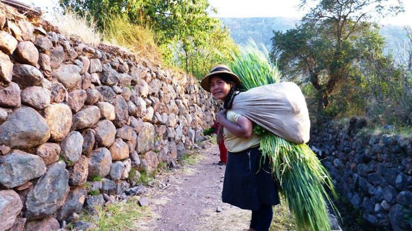 Local woman in Peru