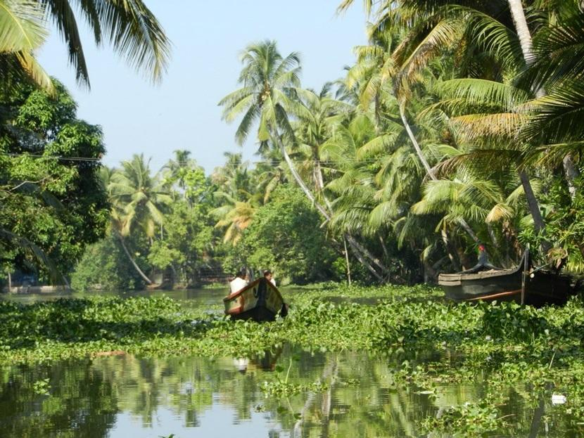 The Keralan backwaters