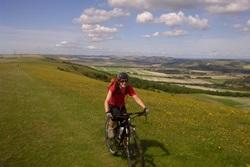 Aches, Scrapes And Plenty Of Cakes - Cycling The South Downs Way