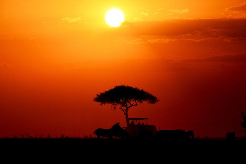 Sunset Safari in Tanzania