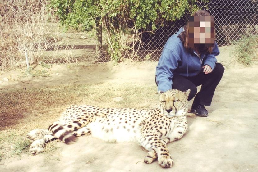 A girl petting a cheetah