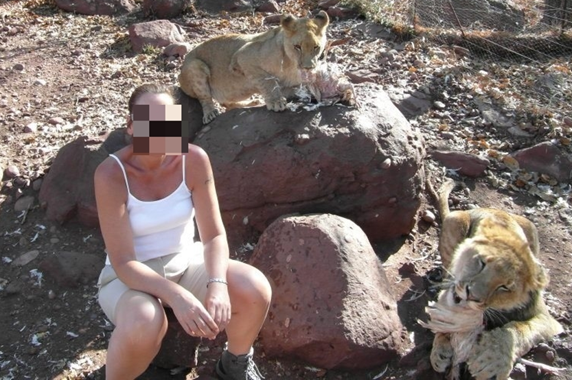 Woman sits next to lions while they feed