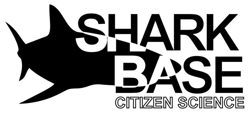 The logo of SharkBase
