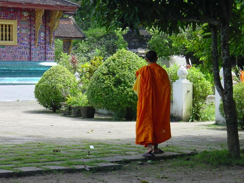 A Buddhist monks wears traditional attire and walks among temple grounds