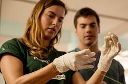 6 Reasons To Take Your Medical Elective Abroad | Projects Abroad