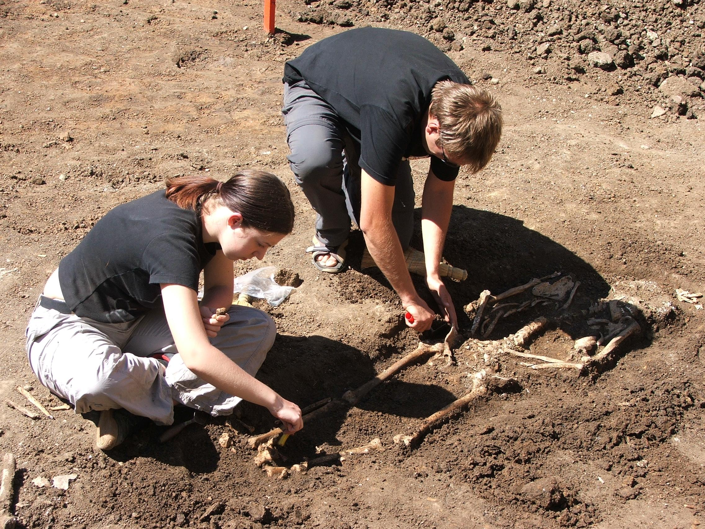 A group of Archaeology volunteers in Romania digging on site