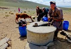 Nomads demonstrating daily work to volunteers in the countryside of Mongolia