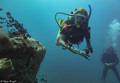 Marineprojekt i Cambodja