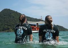 Volunteers in the ocean on the Conservation & Environment project in Cambodia