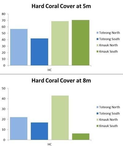 Hard coral cover comparison
