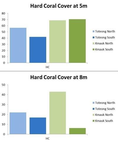 Hard coral cover comparison