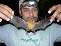 Yow and bat
