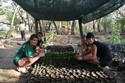 Volunteers in the nursery area