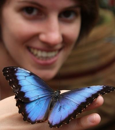 Projects Abroad Costa Rica volunteers work on butterfly project at Barra Honda National Park
