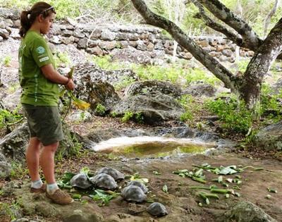 Conservation in Ecuador