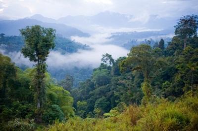 Ecuador Conservation