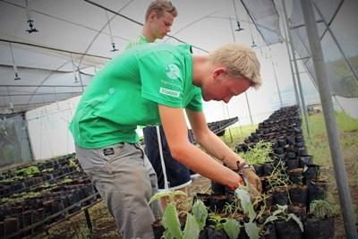 Projects Abroad volunteers working in the Galapagos National Park nursery on the Conservation Project in Ecuador