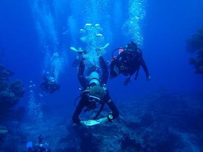 Survey Dive - Remy