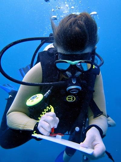 Diver taking notes on slate