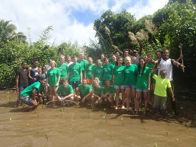 Group mangroves