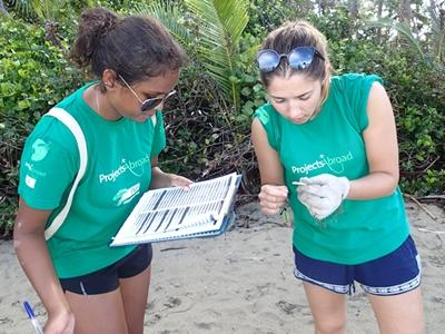 Volunteers collecting data during a beach clean-up