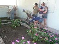 Volunteers at the crocodile farm