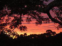 Sandoval Sunset