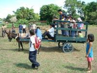Test run for donkey and trailer with the community children