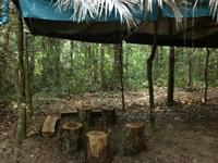 Camp Site for Spider Monkey Project
