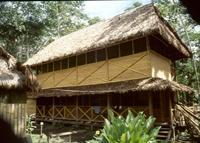 Taricaya 2001