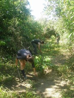 Agroforestry Project at Palma Real