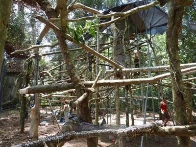 New howler monkey enclosure
