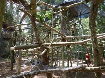 New howler monkey enclosure