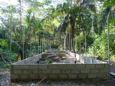 Cage building