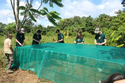 Building the plant nursery at the community