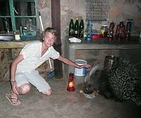 Harry and Porcupine