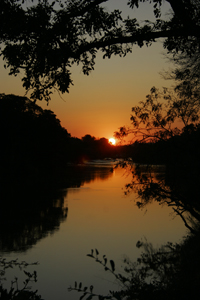 Sunrise over the Limpopo river