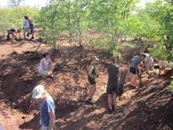 Volunteers building dam