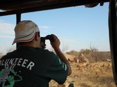 A volunteer identifying animals on the Conservation Project